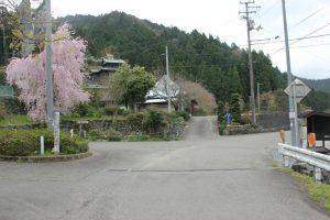玉ヶ峠&神山温泉分岐(2017.4)