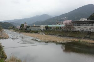 神山温泉ルート。桜が満開(2017.4)