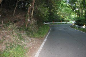 普通は車道を遍路。左の山道は地蔵越へ(2017.5)