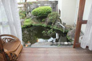 庭の池には鯉が(2017.9)