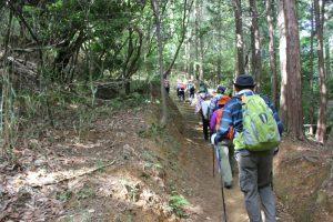 端山休憩所から整備された登り道(2018.5)