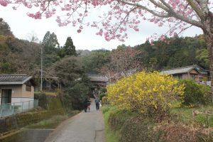 藤井寺門前(2019.3.21)